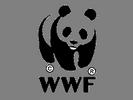 gite-panda-wwf