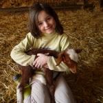 gite-verdon-agnelage